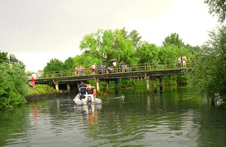 La riviera friulana